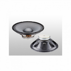 AN-2610 Speaker 10'', 4 Ω