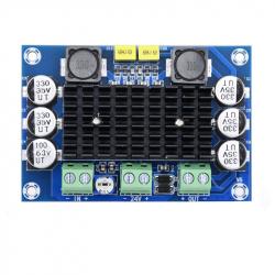 TPA3116D2 Mono Amplifier Module (12 - 24 V, 100 W)