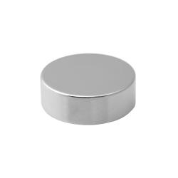 Neodymium Disc Magnet 29x10 Thick N38