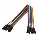 Wires Female-Female 10p 30 cm