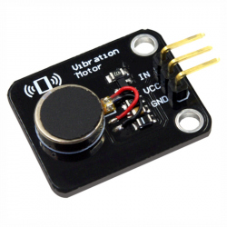 Module with Vibration Motor