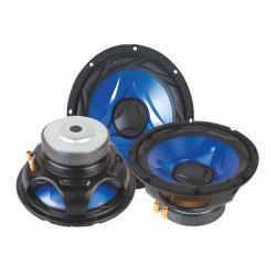 Speaker HWF-0810, 25 cm, 10'', 4 Ω