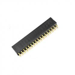 2 x 17p 2.54 mm Female Pin Header